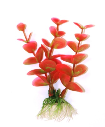 МЕДОСА Лимонник - шелковое растение 50 см Red YM-01